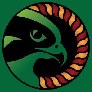 Keltic Falcon Logo
